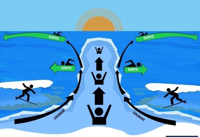 Milieu aquatique